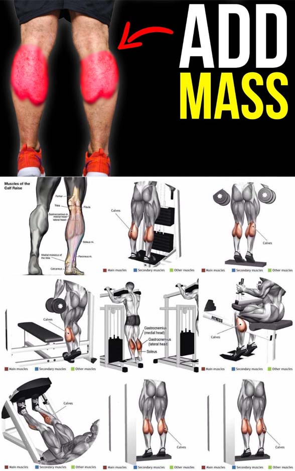 Calves Exercises Tips
