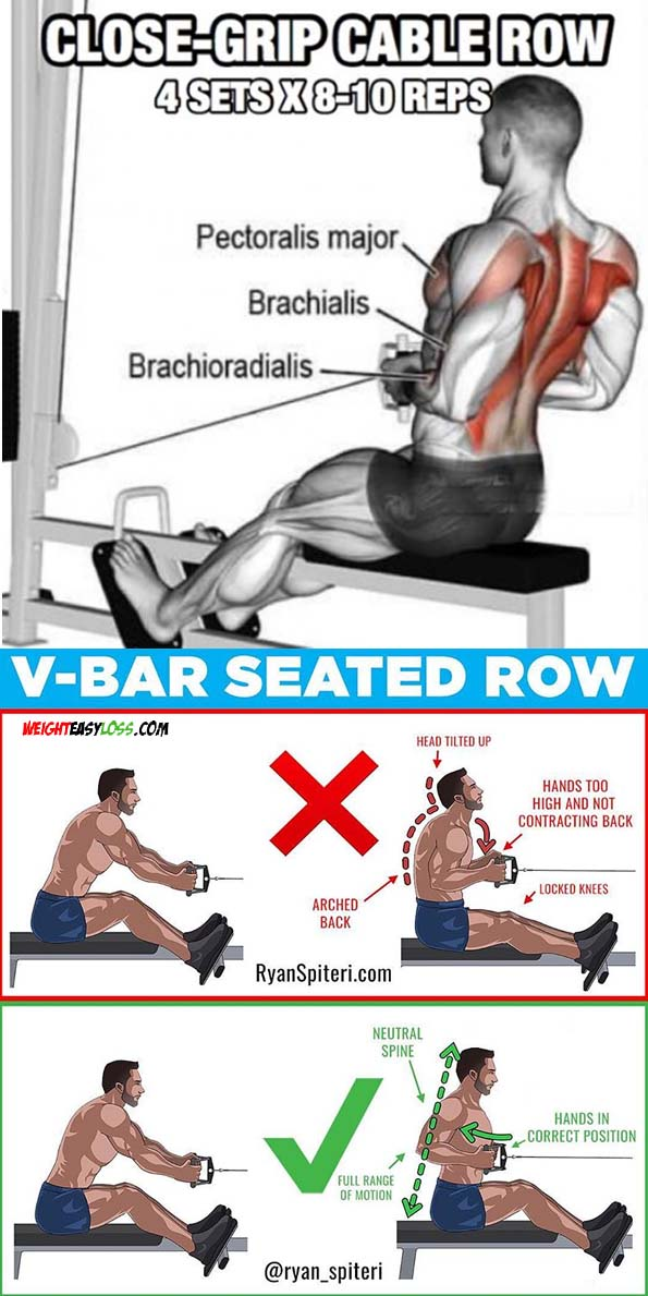 V-BAR SEATED CABLE ROW