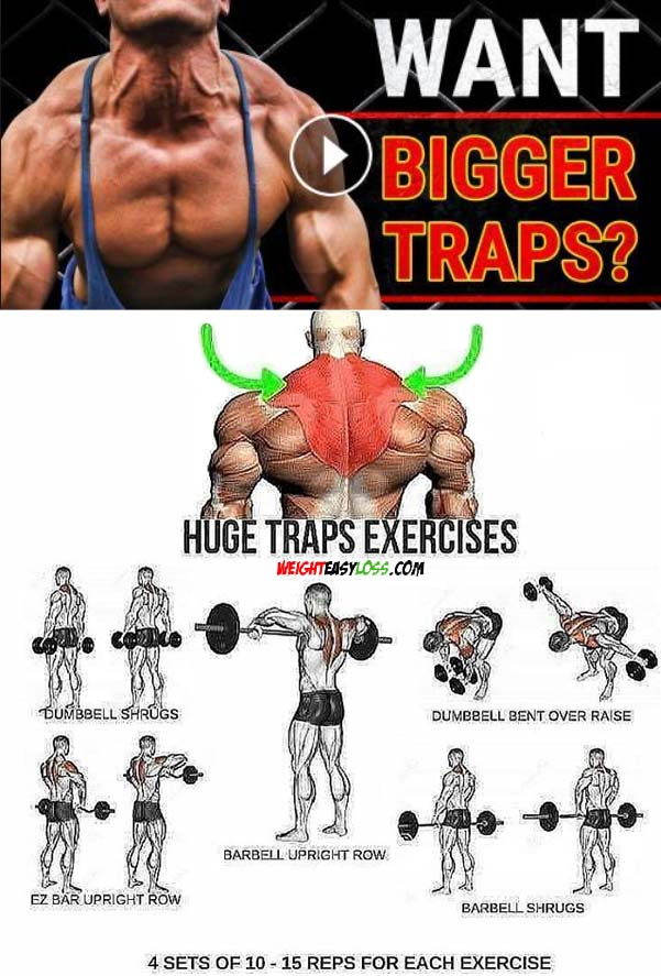 Huge Traps Exercises