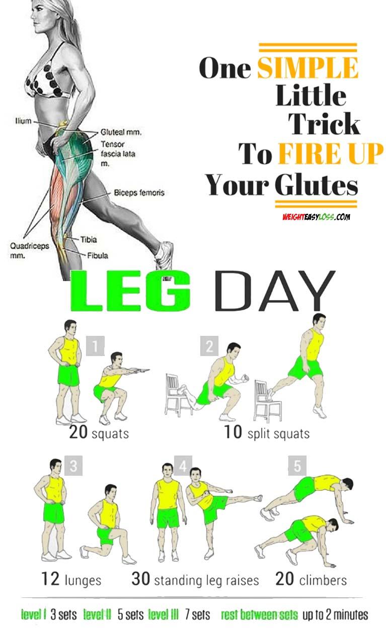 Leg & Glutes Exercises