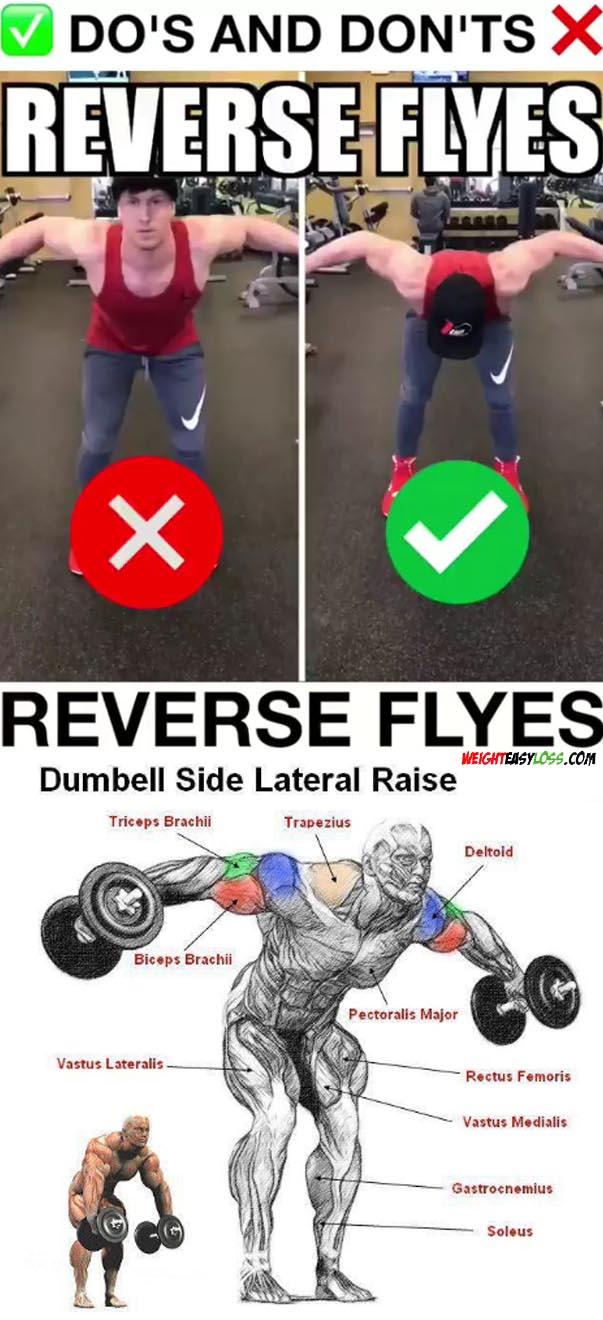 Reverse Shoulder Flys
