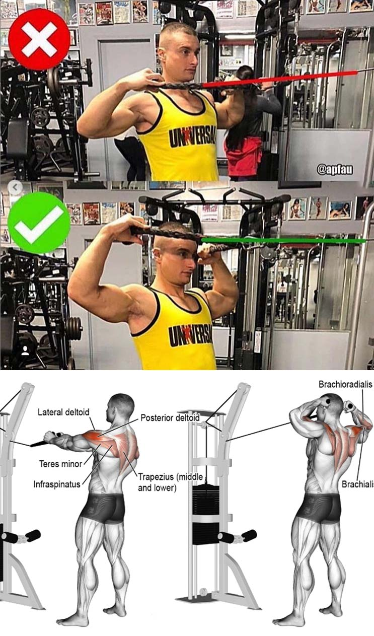 Cable face pull exercise guide