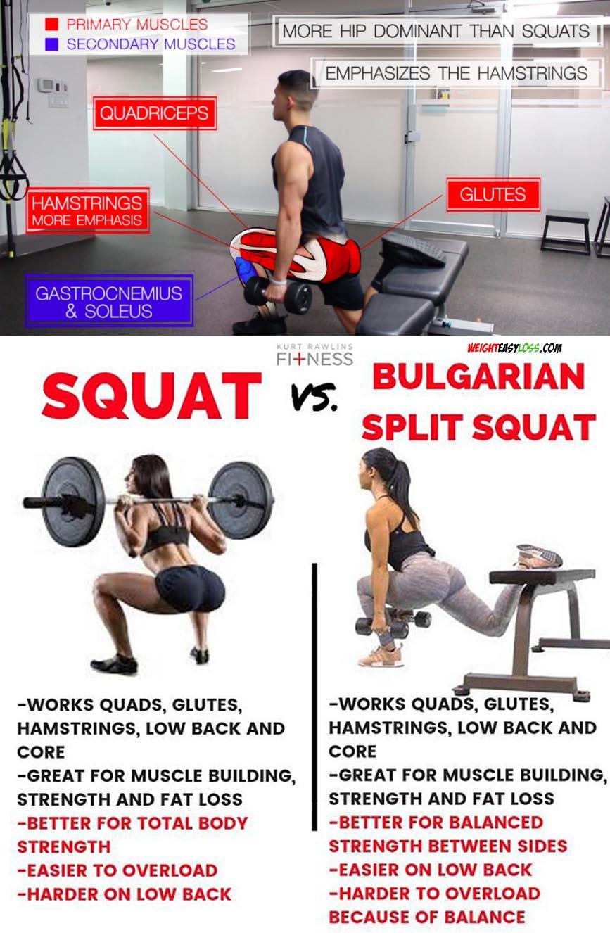 Squat & Bulgarian Split Squat