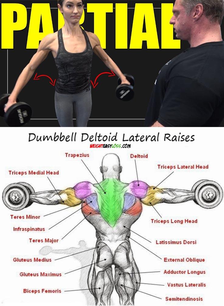 Dumbbell Flys Tips