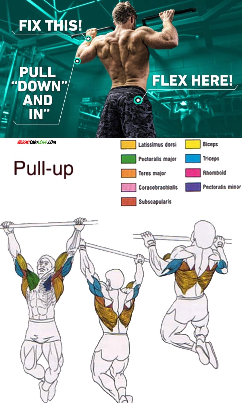 PULL UP TIPS