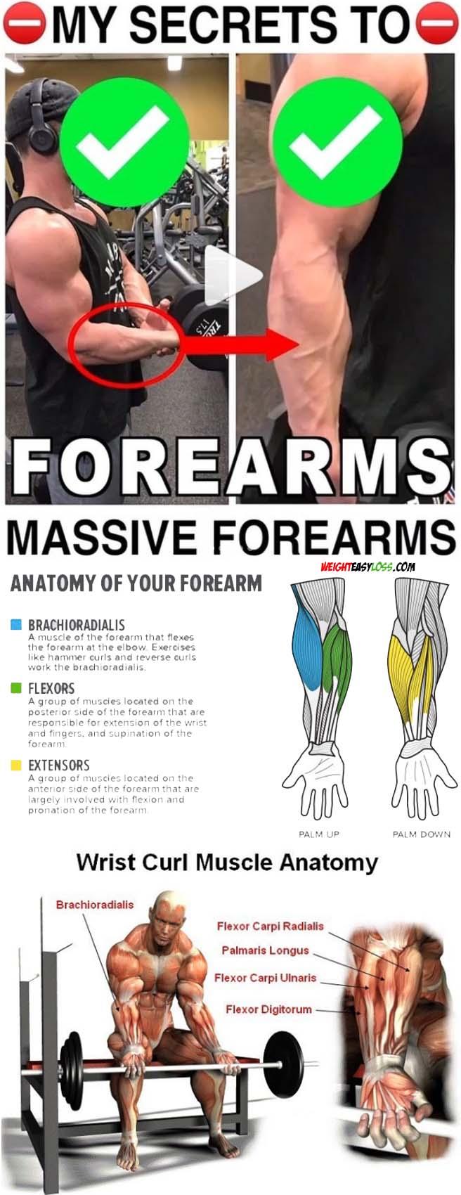 Dumbbell wrist flexion