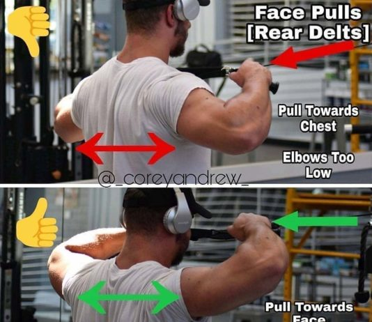 The Cable Face-Pull