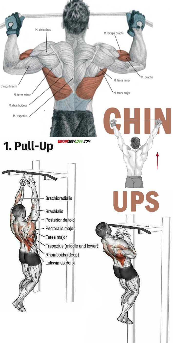 Chin ups & pull ups
