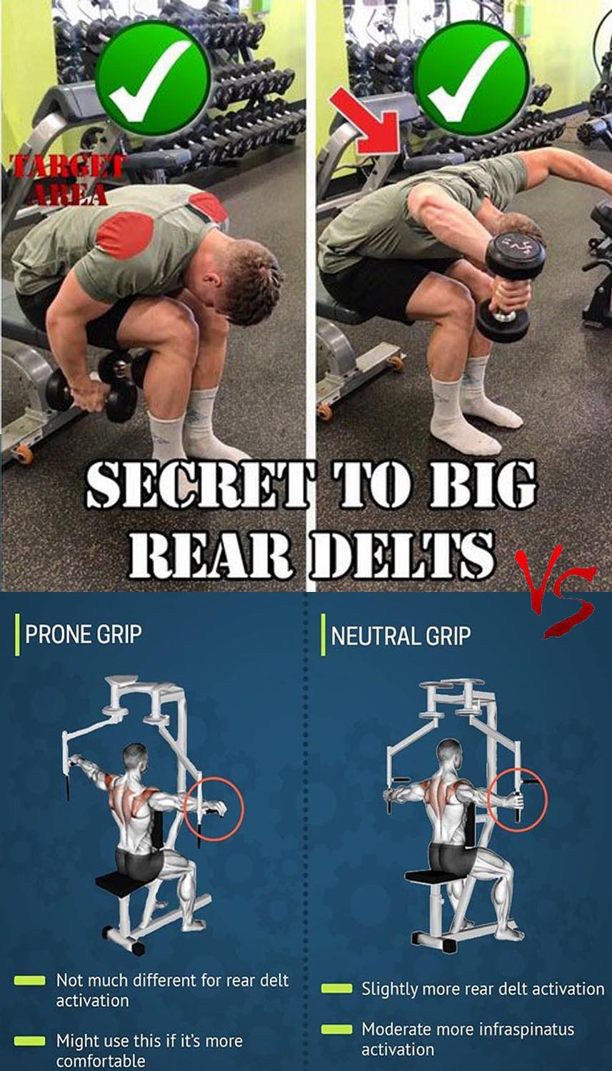 Rear delts: raises