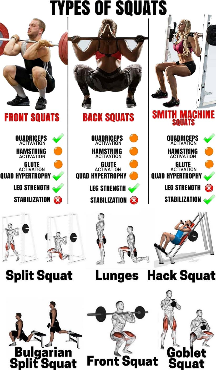 barbell squats with other exercises