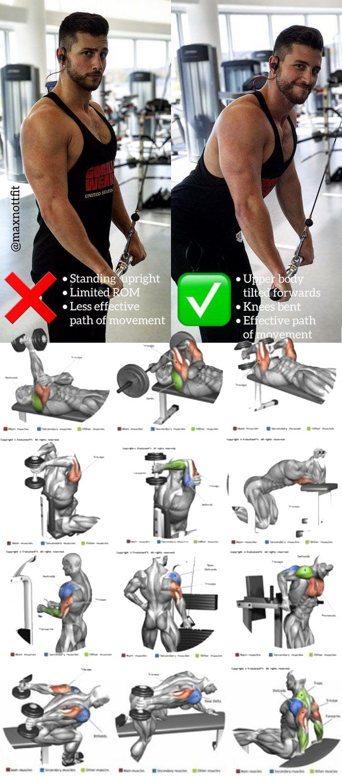 Triceps cable rope pushdown