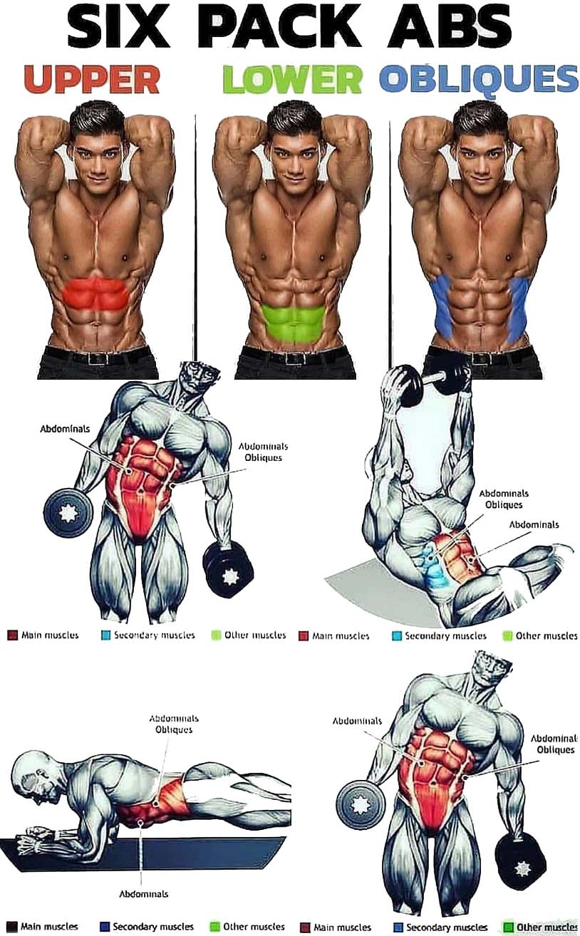 Six Pack ABS | Upper & Lower & Obliques