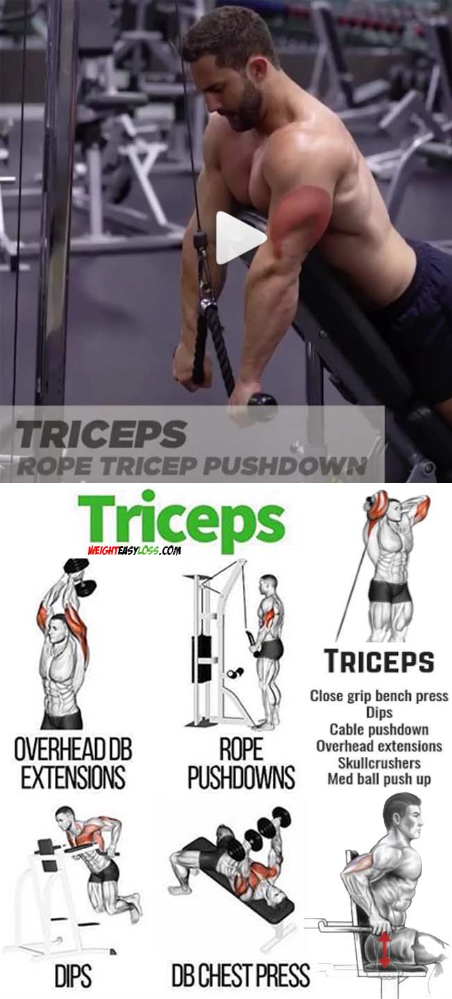 Triceps Rope Pushdown