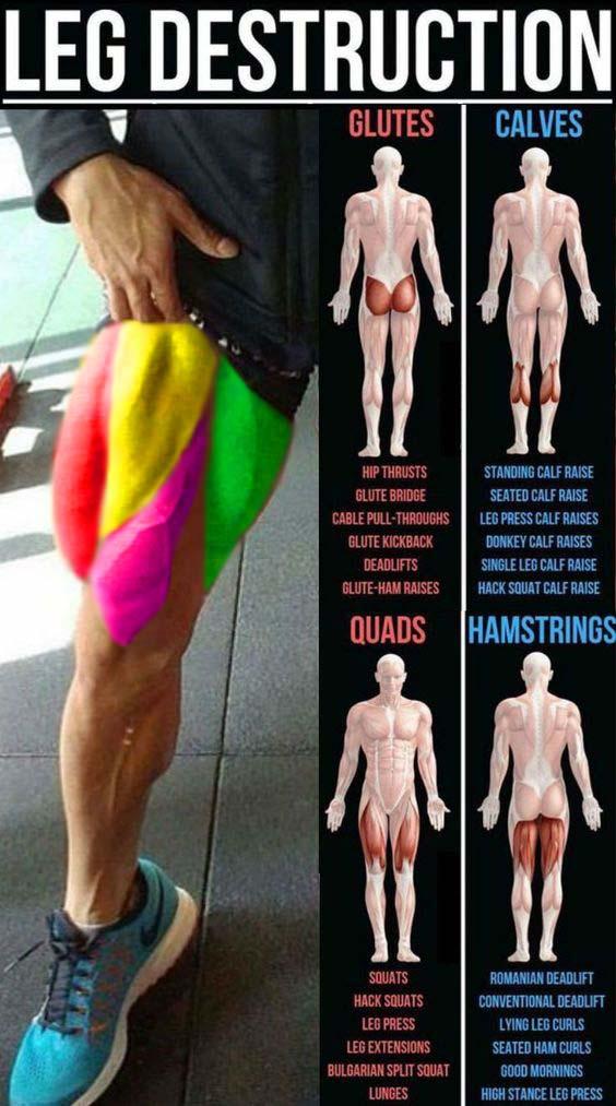 Leg Destruction Workout