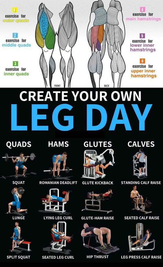 Legs Day Exercises