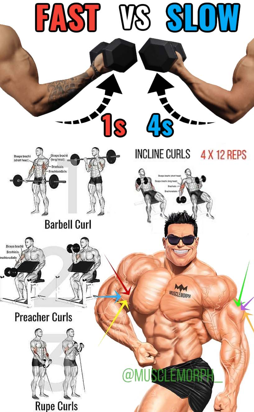 Biceps Guide Workout