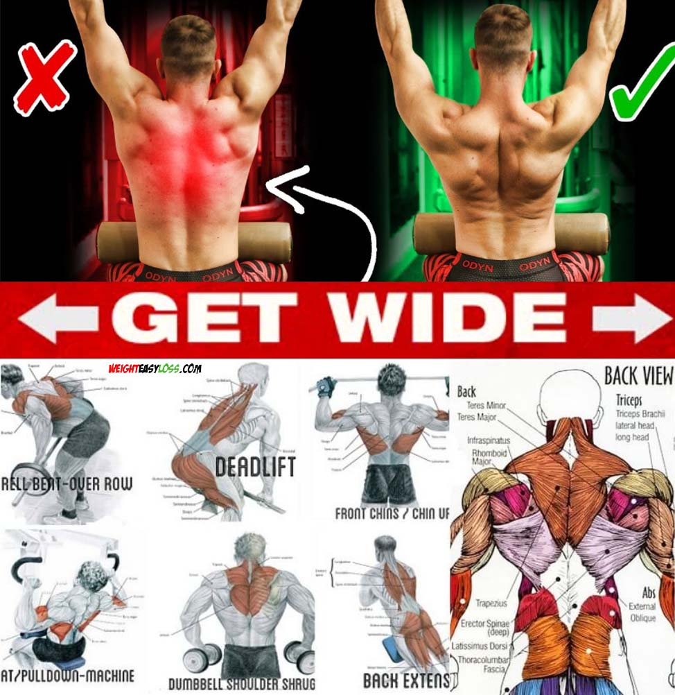 Get Wide Back Exercise