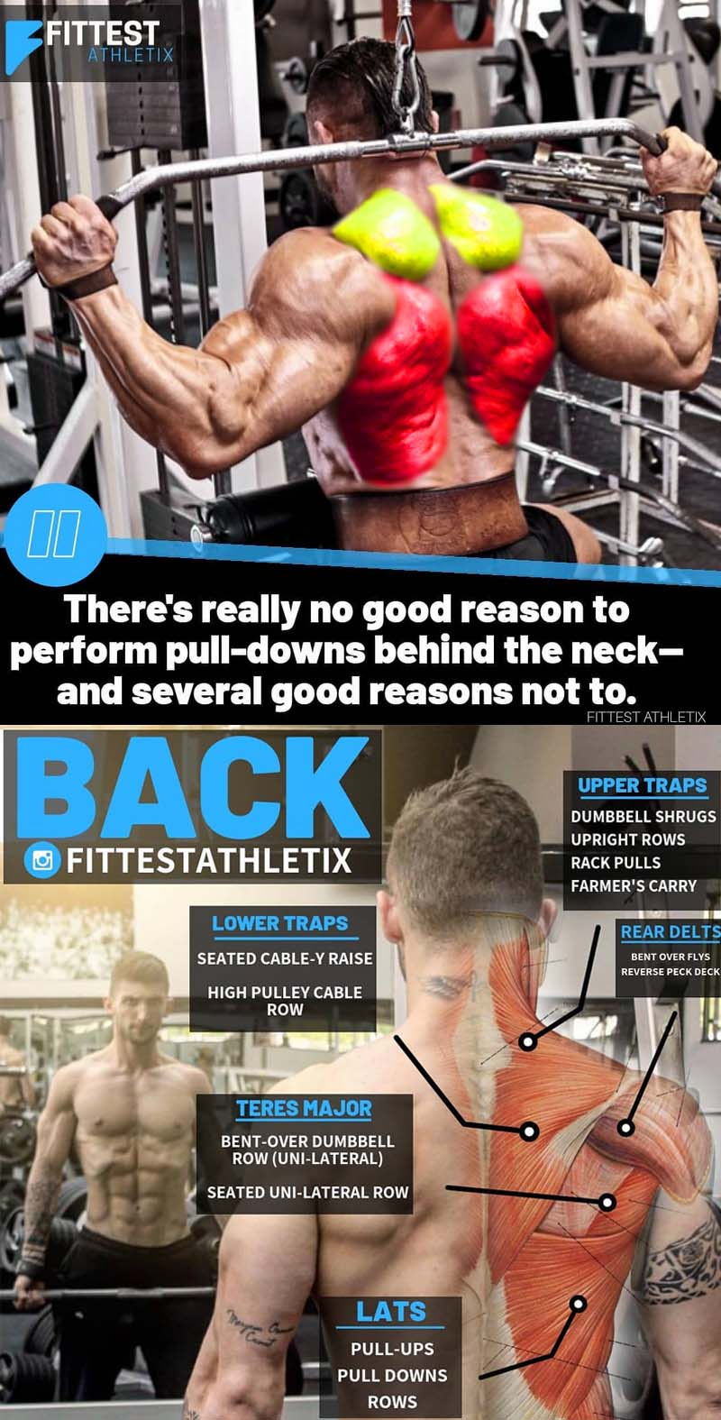 Back Exercises Guide