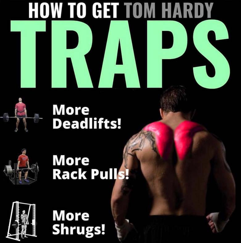 How to Traps