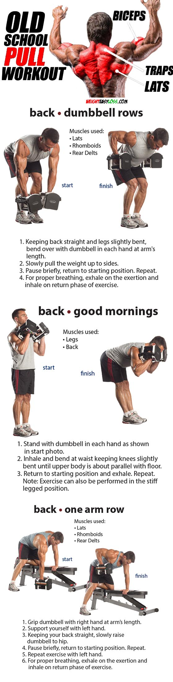 Rhomboids & Back Exercises
