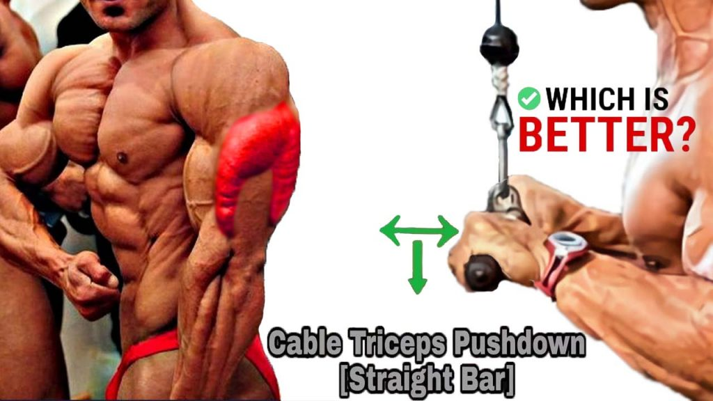cable triceps pushdowns straight bar
