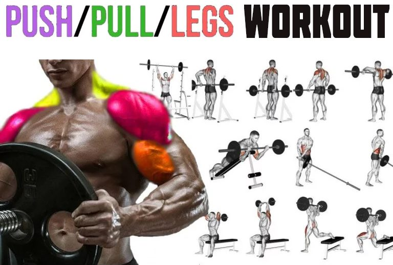 How to Do Push Pull Legs Workout