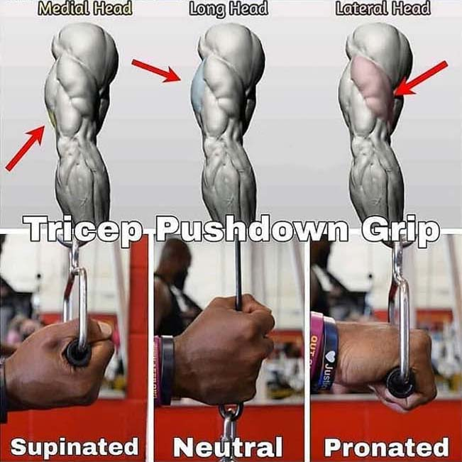 How to Triceps Pushdown Grip