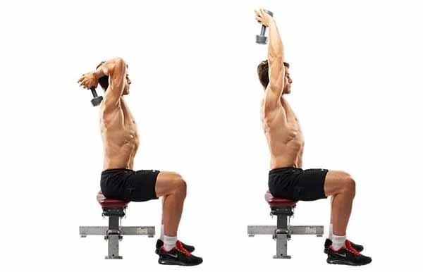 dumbbell extension workout