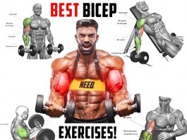 The Best for Building Muscle
