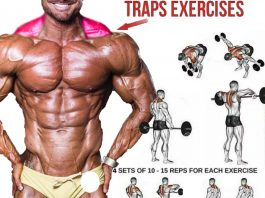Best Trap Exercises