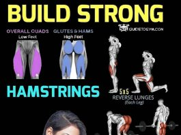 build hamstring