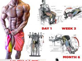 Best leg muscle exercises