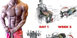 Best leg muscle exercises
