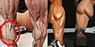 Sanding Calf Raises vs. Seated Calf Raises