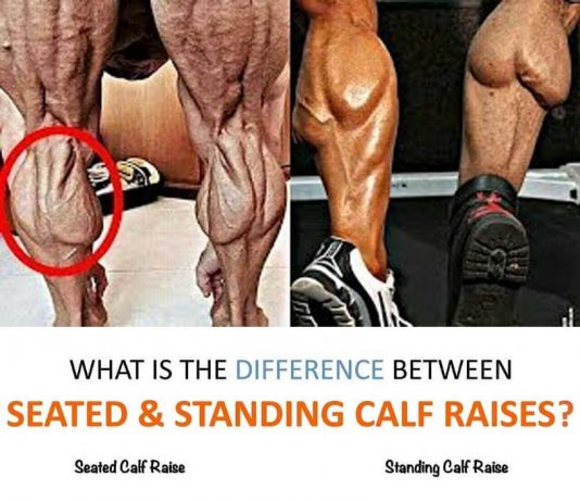 Sanding Calf Raises vs. Seated Calf Raises