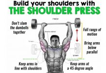 dumbbell press exercises