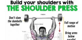 dumbbell press exercises