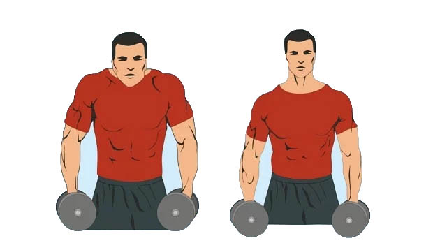 How to Dumbbell Shrugs