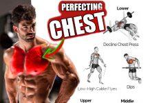 Build Chest - Perfect Exercises