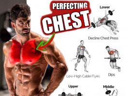 Build Chest - Perfect Exercises