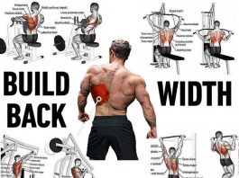 Build Back - exercises