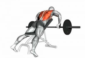 incline barbell row exercises