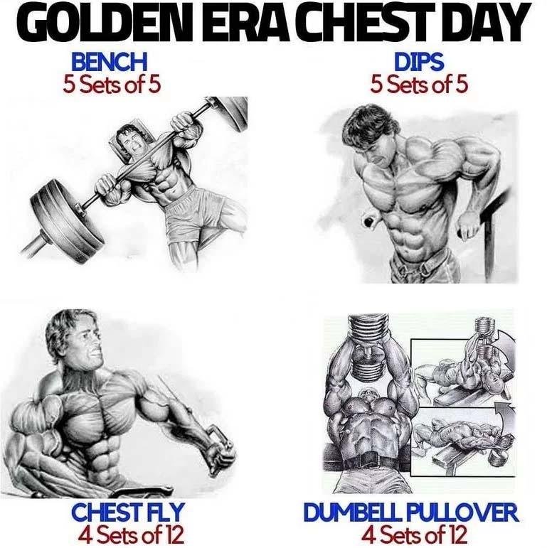 Arnold Schwarzenegger Chest Training