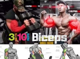 The biceps workout, benefits, tips