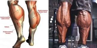 How to Standing Calf Raises