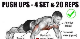 Classic Push ups Workout