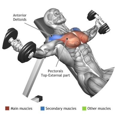 dumbbell exercises flys