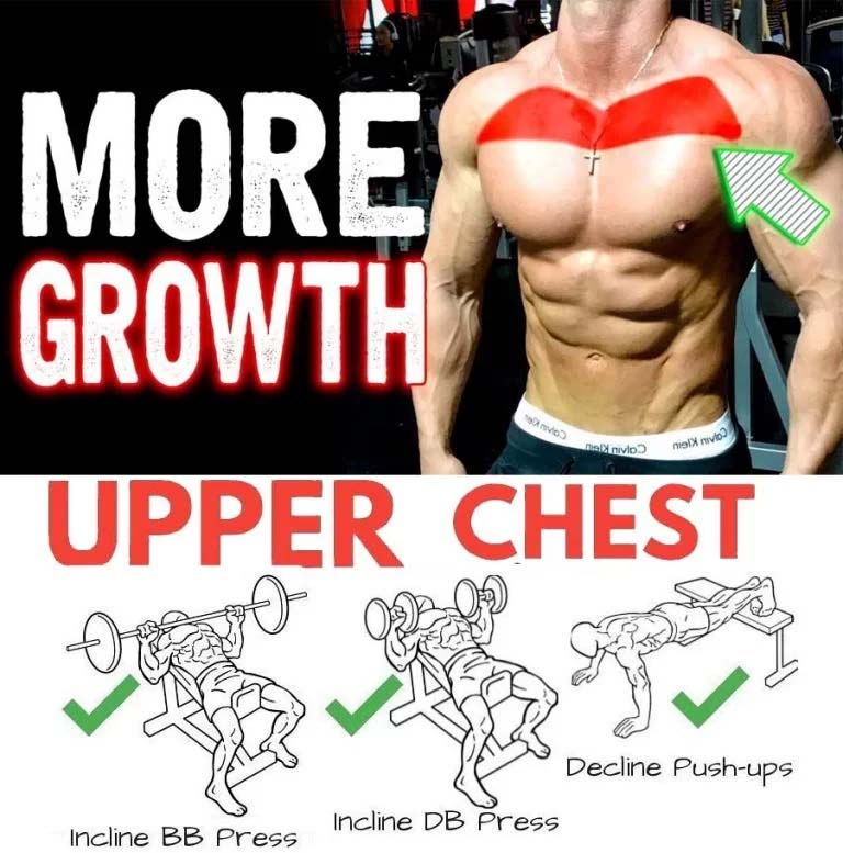 Training Upper Chest