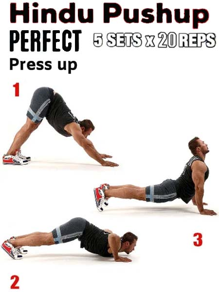 How to Do Perfect press up Hindu pushup
