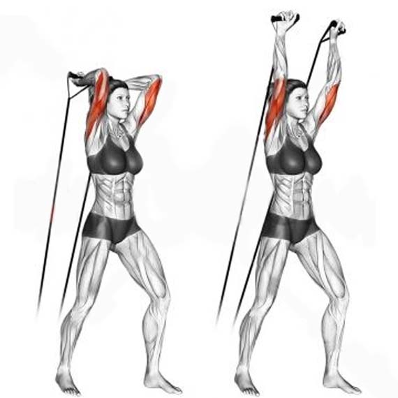 HOW TO TRICEPS BAND EXTENSION